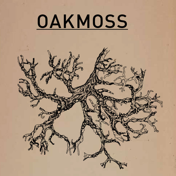 oakmoss